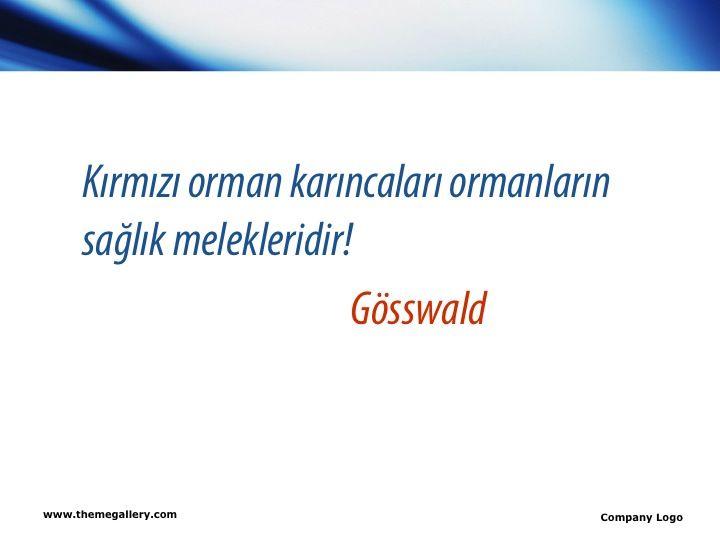 slide03